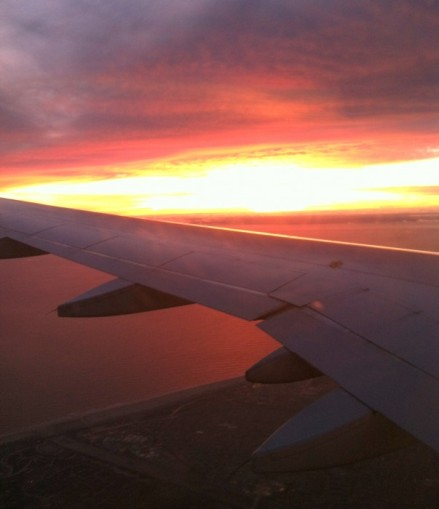 Sunset as I arrived back in Los Angeles. Hello, home.
